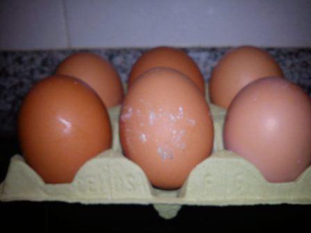 Huevos no muy limpios