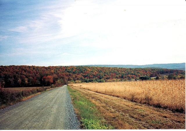 carretera de macadan